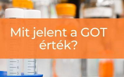 Mit jelent a GOT, azaz glutamát oxálacetát transzamináz érték a laborleletben?